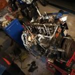 motore reanult 4 maremma cinghiala