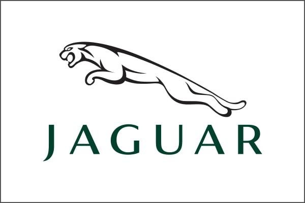 Ricambi Jaguar d'epoca