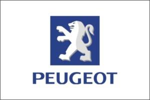 Ricambi Peugeot d'epoca